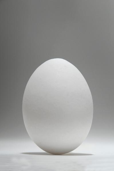 ägg, hönsägg