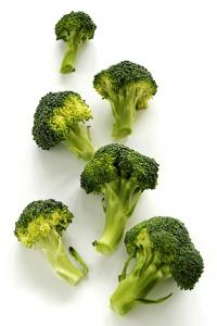 Broccoli, Brassica oleracea var. cymosa