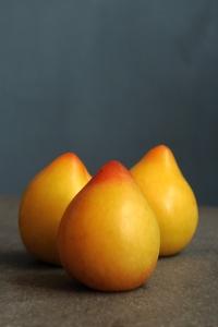 Citronplommon, plommon, Prunus domestica