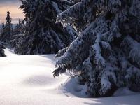 Vinter, Norge, vinterbild, snö