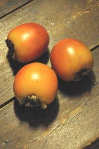 Persimon, Diospyros virginiana, kaki, amerikansk persimon, Diospyrosfrukt